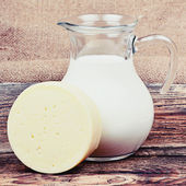 Glass jug with milk and piece of cheese — Foto de Stock
