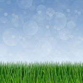 Green grass and abstract bokeh lights background — Stock Photo