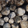Stack of dry firewood — Stock Photo