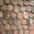 Stock Photo: Rundown roof tiles