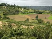 Rural landscape in Hohenlohe — Stock Photo