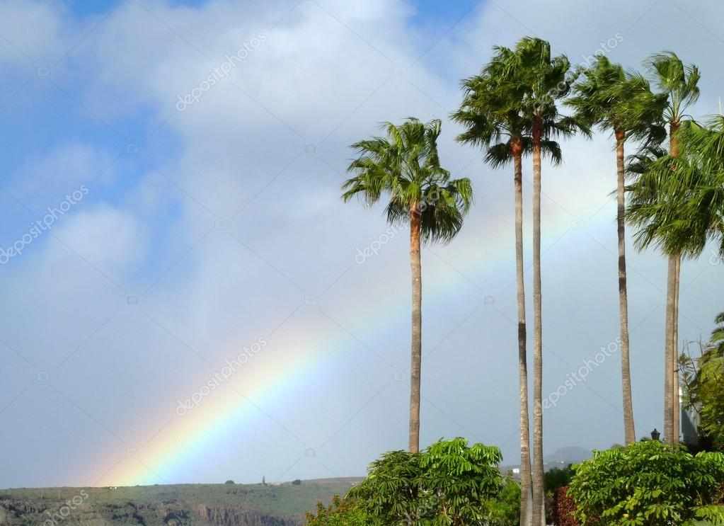 Idyllic scenery with rainbow and palm trees at La Gomera, one of the Canary Islands in Spain — Stock fotografie #18019007