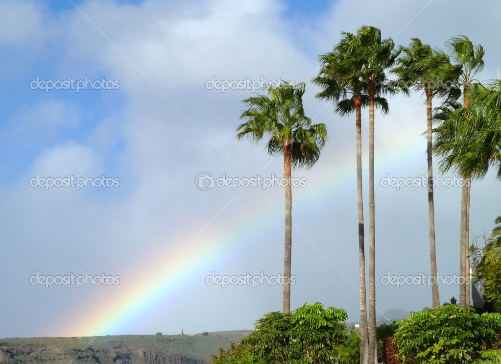 Idyllic scenery with rainbow and palm trees at La Gomera, one of the Canary Islands in Spain — Foto de Stock   #18019007
