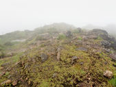 Foggy mountain top — Stock Photo