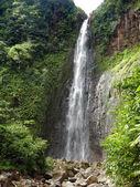 Karibská vodopád — Stock fotografie