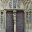 Door at the Erfurt Cathedral — Foto Stock
