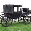 Historic carriage — Stockfoto #29691081