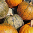 Pumpkins — Stock Photo #33316229