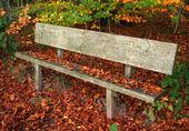 Деревянная скамья — Стоковое фото