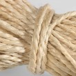 Stock Photo: Solid twine