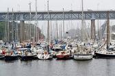 Cenário de porto — Foto Stock
