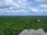 Temple ruins at Calakmul — Stock Photo