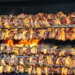Grilled chicken and pork — Stock Photo