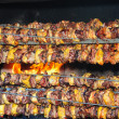 Stock Photo: Grilled chicken and pork