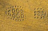 Fußabdruck Schuh — Stockfoto