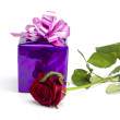 Rose and violet gift — Stock Photo