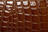 Structure of a leather matter — ストック写真