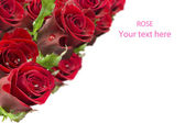 Greeting card with a bouquet of roses — Stock Photo