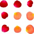 Stock Vector: A collection of rose petals