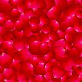 The texture of the petals of roses.Vector — Vector de stock