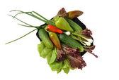 Ensalada de verduras, pepino, cebolla, pimienta a descansar sobre la placa — Foto de Stock