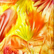 Watercolors abstract bright flower as background — Stock Photo