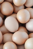 Eggs background — Stock Photo