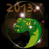 Year of the snake 2013 — Stock Photo