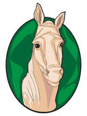 Horse clipart — Stock Photo