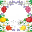 Spring frame -  