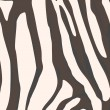 Zebra background - Foto Stock