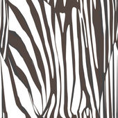 Padrão de pele de zebra — Foto Stock