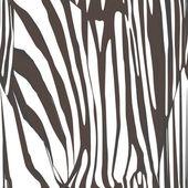 斑马皮肤图案 — 图库照片