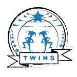 Twins — Stock Photo #27305391