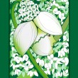 Sprong snowdrop card — Stock Photo