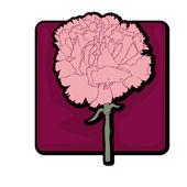 Carnation clip art — Stock Photo