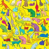 Patrón de color de los gatos — Foto de Stock