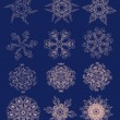 Collection of abstract snowflakes. for use in your design — Stock Vector