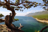 Landscape at the Baikal lake in Siberia. — Stock Photo