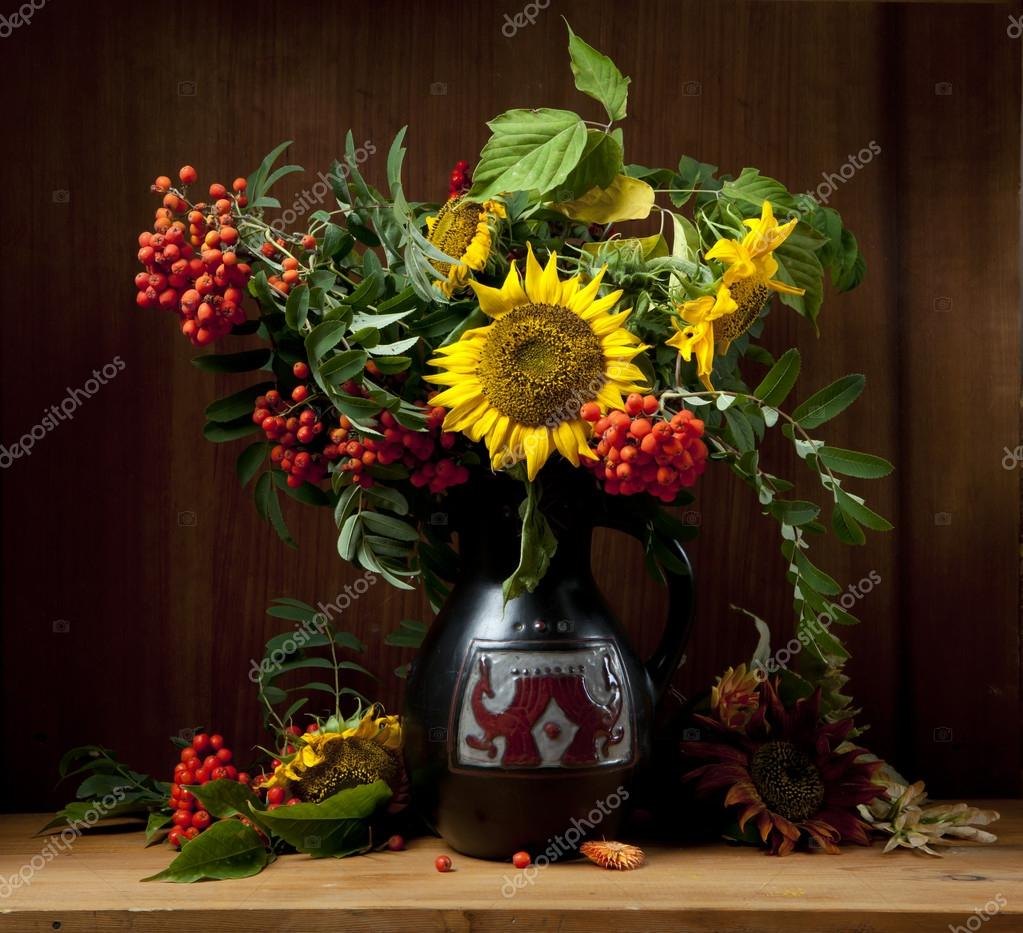 Still Life with Sunflower — Stock Photo © sbelov #32996329