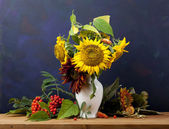 Still Life with Sunflower — Stock Photo