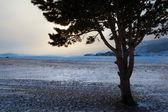 Inverno lago baikal — Fotografia Stock