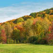 Stock Photo: Fall in Glen Eden conservation areMilton, Ontario