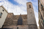 Barcelona: Gothic Cathedral of Santa Eulalia in Barri Gotic — 图库照片