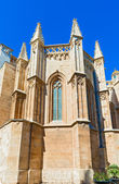 Cathedral of Saint Mary of Tarragona in Spain — Stockfoto