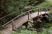 Wooden bridge with railings across mountain river — Stock Photo