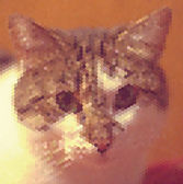 Portrait cat of geometric hexagons pattern — Stock Vector