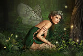 In het forest fairy — Stockfoto