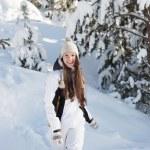 Snowy woodland — Stock Photo