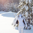 Stock Photo: Snowy woodland